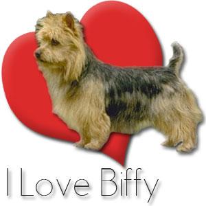 I love biffy