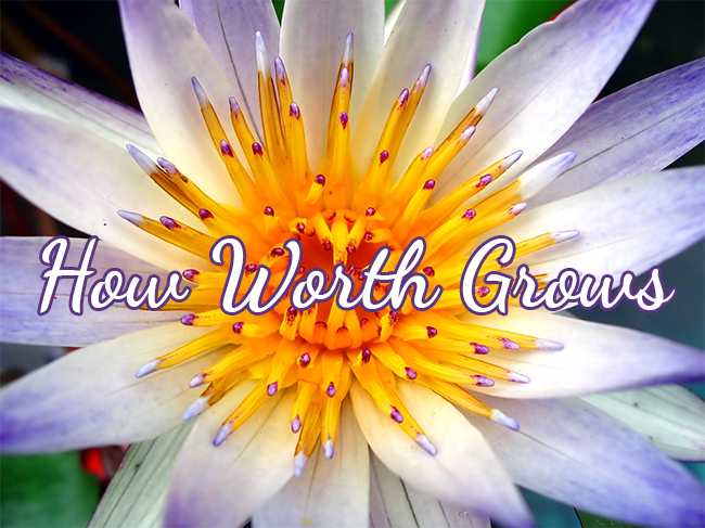 How worth grows