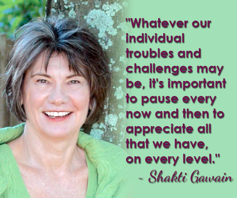 """""""Whatever our individual troubles and challenges may be, it's important to pause every now and then to appreciate all that we have, on every level."""" ~ Shakti Gawain"""