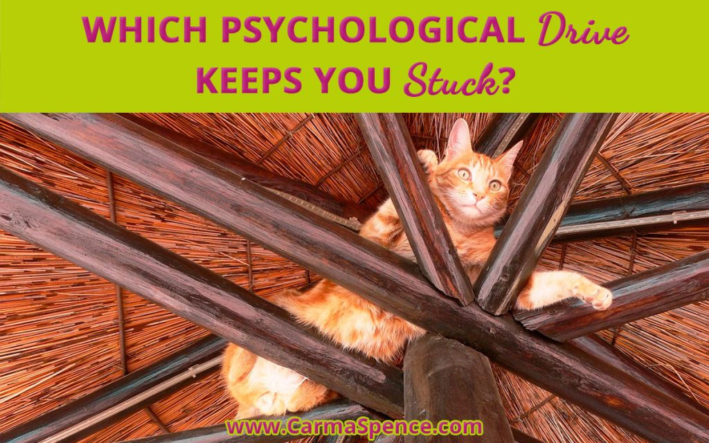 Which Psychological Drive Keeps You Stuck?